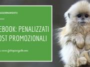 Nuovo aggiornamento dell'algoritmo di Facebook: penalizzati i post promozionali