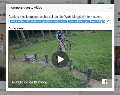 A questo punto, clicca su Incorpora Video: ti si aprirà un pop-up con il codice da copiare e incollare sul tuo sito, assieme ad una anteprima del suo contenuto.